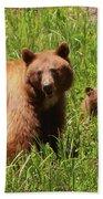 The Three Bears Bath Towel