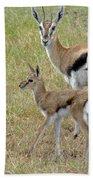 Thomsons Gazelle Bath Towel