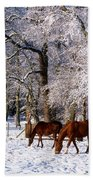 Thoroughbred Horses, Mares In Snow Bath Towel
