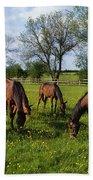 Thoroughbred Horses, Yearlings, Ireland Bath Towel