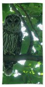 Three Barred Owls Bath Towel