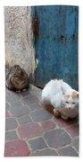 Three Cats In Essaouira Bath Towel