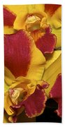 Three Yellow And Red Orchids Bath Towel