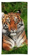 Tiger Sitting In The Grass Bath Towel