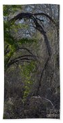 Tree Abstract  Bath Towel
