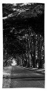 Tree Canopy Promenade Road Drive . 7d9977 . Black And White Bath Towel