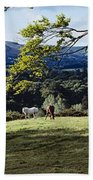 Tree In A Field, Great Sugar Loaf Bath Towel