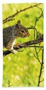 Tree Visitor Hand Towel