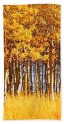 Trees In Autumn Bath Towel