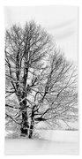 Trees In Winter Bath Towel