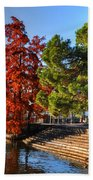 Trees On The Lake Front In Autumn Bath Towel