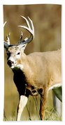 Trophy Buck Bath Towel