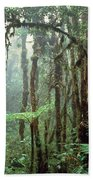 Tropical Cloud Forest Hand Towel