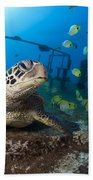 Turtle And Sealife Bath Towel