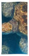 Turtle Underwater,high Angle View Bath Towel