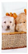 Two Toys Bath Towel