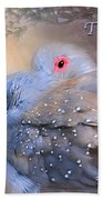 Two Turtle Doves Card Bath Towel