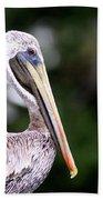 Ugly Beauty - Brown Pelican Bath Towel