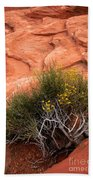 Valley Of Fire Yellow Vegetation Nevada Bath Towel