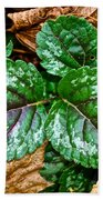 Vibrant Ground Cover  Bath Towel