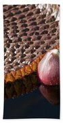 Victoria Amazonica Giant Water Lily Bath Towel