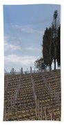 Vineyard With Cypress Trees Bath Towel