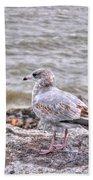 Waiting Gull Bath Towel