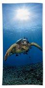 West Maui Sea Turtle Bath Towel