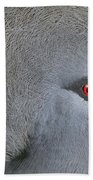 Western Crowned-pigeon Goura Cristata Bath Towel