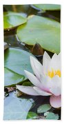 White And Pink Water Lily Bath Towel