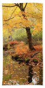 White Ash And Stream In Autumn Bath Towel