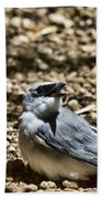 White-bellied Cuckoo-shrike Bath Towel