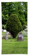 White Tree In Cemetery Bath Towel