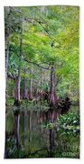 Wild Florida - Hillsborough River Bath Towel