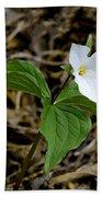 Wild White Trillium Hand Towel