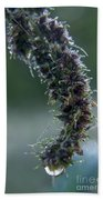 Wildflower Dew Covered Bath Towel