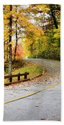 Winding Road Bath Towel