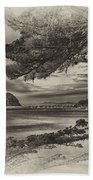 Windy Cove Bw Hand Towel