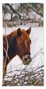 Winter Horse Landscape Bath Towel