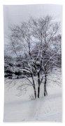 Winter Landscape 6 Bath Towel