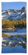 Winter Reflections Bath Towel