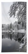 Wintery Reflections Hand Towel