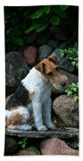 Wirehair Fox Terrier Bath Towel