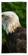 Wisconsin Bald Eagle Bath Towel