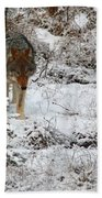 Wolf On The Prowl Bath Towel