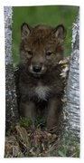 Wolf Pup Playing Peekaboo Bath Towel