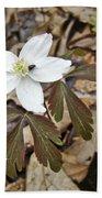 Wood Anemone - Anemone Quinquefolia Bath Towel