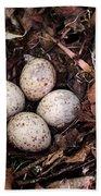 Woodcock Nest And Eggs Bath Towel