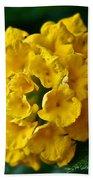 Yellow Blooms Bath Towel