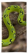 Yellow-blotched Palm Pitviper Bath Towel